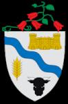 Muni Rio Bueno